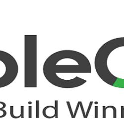 PeopleQlik  new logo